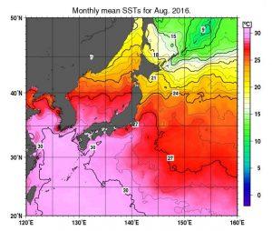 出典:気象庁 月平均海面水温(2016年8月)