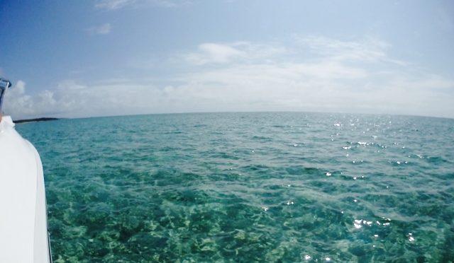 海の環境汚染:モーリシャス沖 貨物船「わかしお」座礁